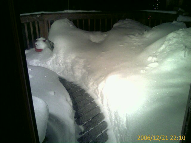 Image of shovelled snow path on the deck.